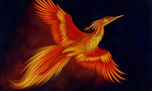 The Year of the Fire Bird