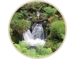 Ignite Your Heart in Dartmoor, England