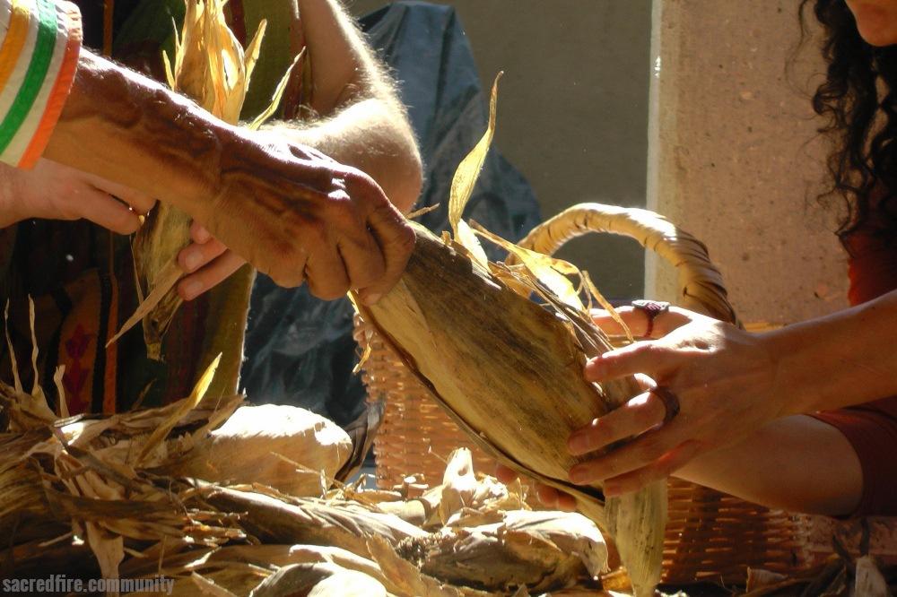 Prosperity, Harvest, Corn